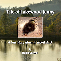 Lakewood Jenny Book Cover